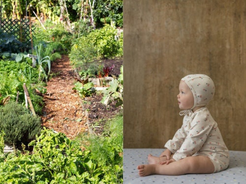 community gardens: a space for everyone