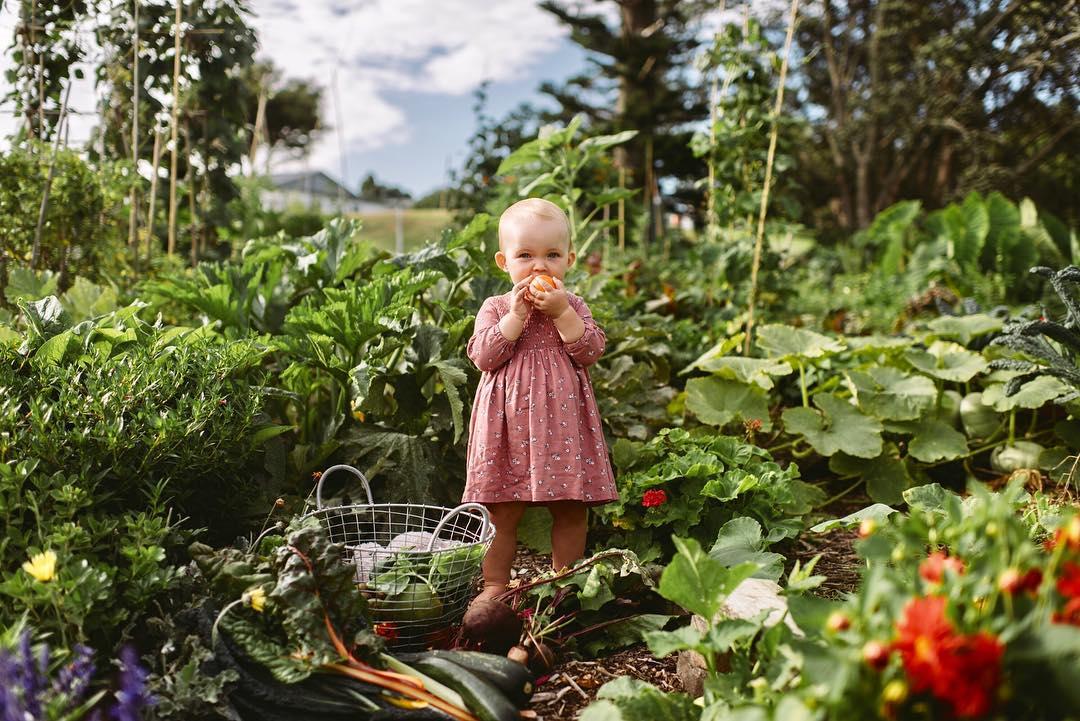 future foody: organic baby food